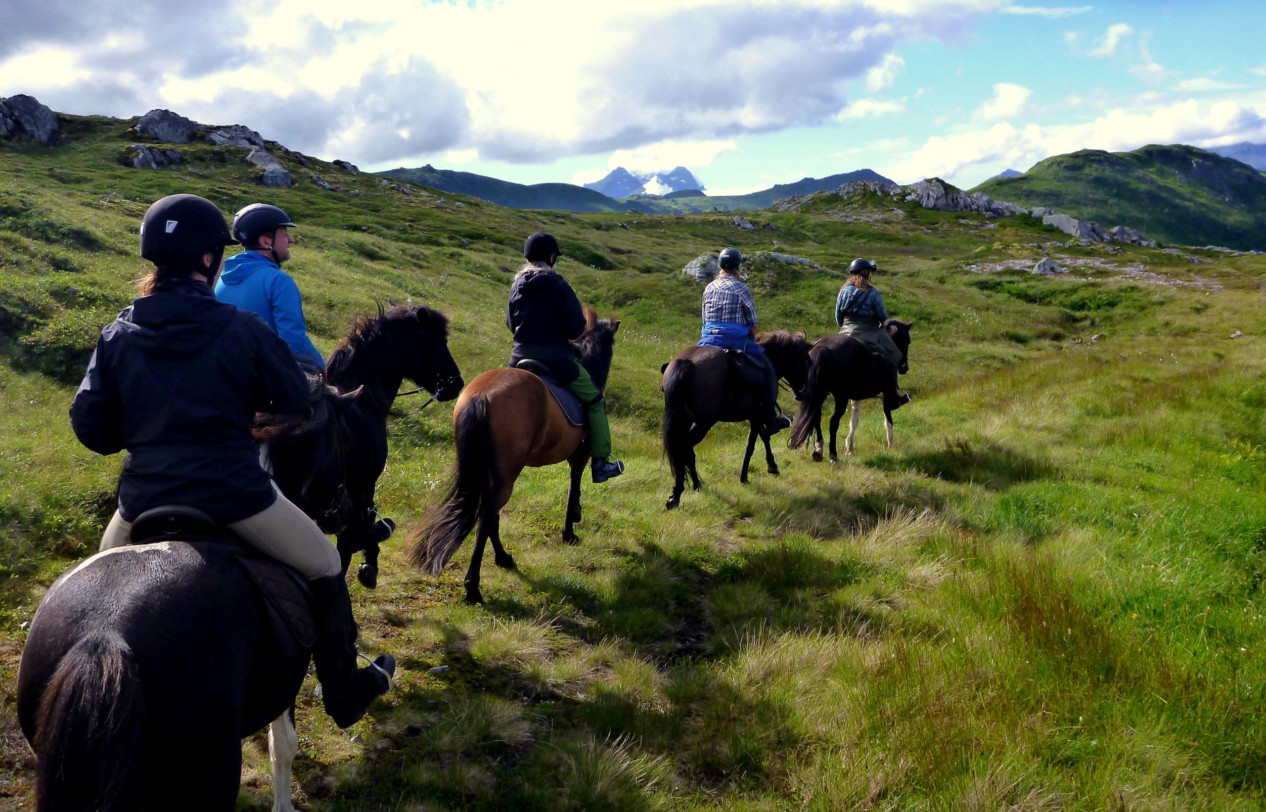 Opplev Lofoten til hest en helg i sommer eller til høsten!